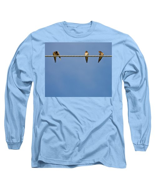 Barn Swallows Long Sleeve T-Shirt by Melinda Fawver
