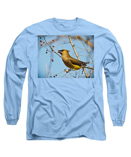 Cedar Waxwing With Berry Long Sleeve T-Shirt by Robert Frederick