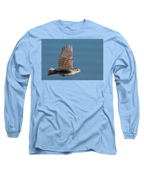 Untitled Long Sleeve T-Shirt by Hal Beral