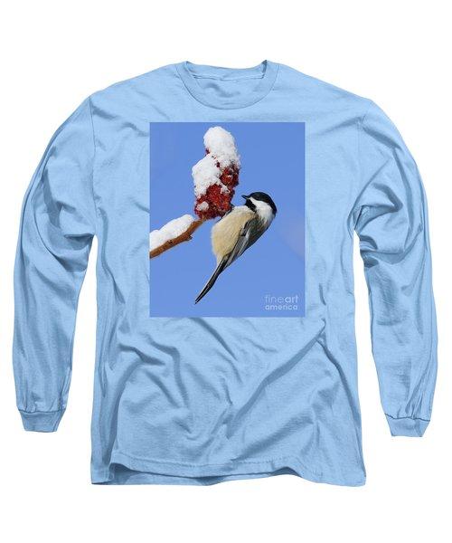 Chickadee Love... Long Sleeve T-Shirt