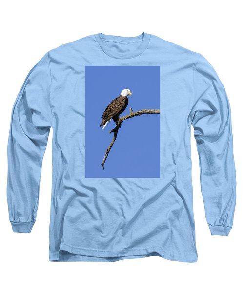 Bald Eagle 4 Long Sleeve T-Shirt by David Lester