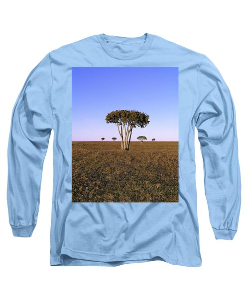Barren Tree Long Sleeve T-Shirt