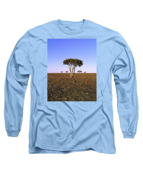 Barren Tree Long Sleeve T-Shirt