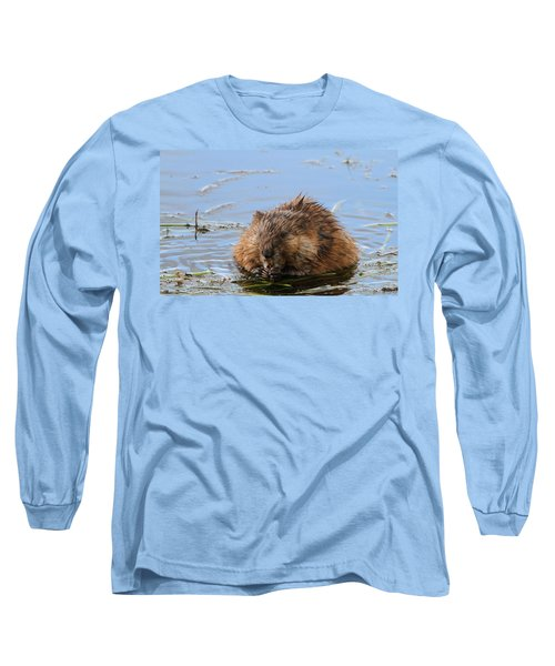Beaver Portrait Long Sleeve T-Shirt by Dan Sproul