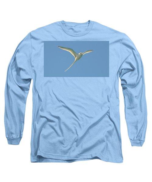 Bermuda Longtail In Flight Long Sleeve T-Shirt by Jeff at JSJ Photography