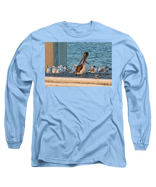 Birds - Among Friends Long Sleeve T-Shirt