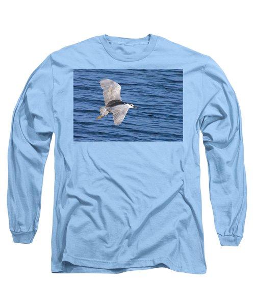 Black Crowned Night Heron In Flight Long Sleeve T-Shirt by Greg Graham