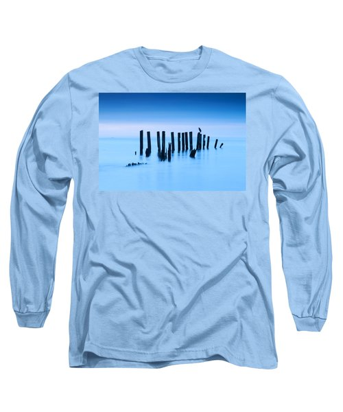 Blue Heron In Blue Long Sleeve T-Shirt