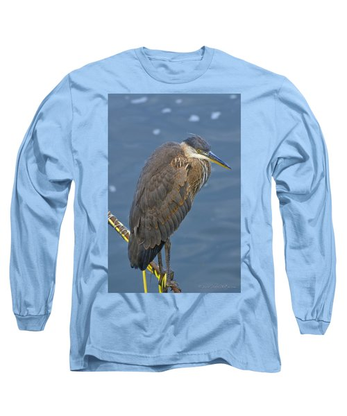 Blue Herron Long Sleeve T-Shirt