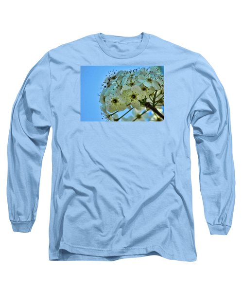 Bradford Pear I Long Sleeve T-Shirt