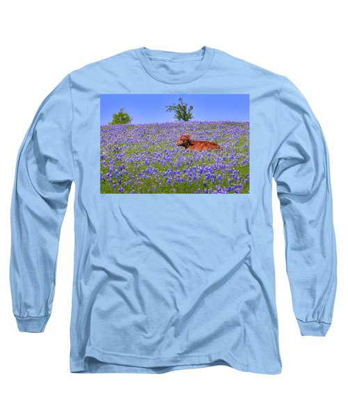 Long Sleeve T-Shirt featuring the photograph Calf Nestled In Bluebonnets - Texas Wildflowers Landscape Cow by Jon Holiday