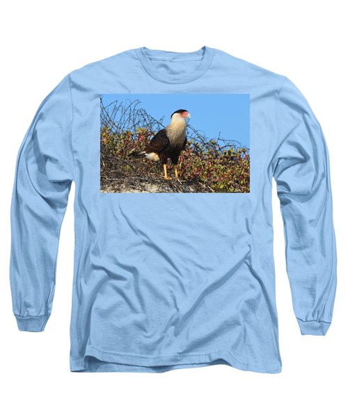 Caracara In The Dunes Long Sleeve T-Shirt by Debra Martz