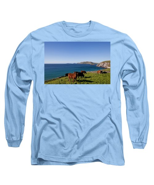Cattle With Distant Blasket Islands Long Sleeve T-Shirt