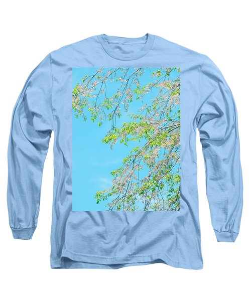Cherry Blossoms Falling Long Sleeve T-Shirt by Rachel Mirror