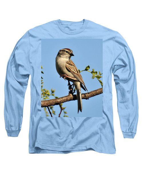 Chipping Sparrow 246 Long Sleeve T-Shirt
