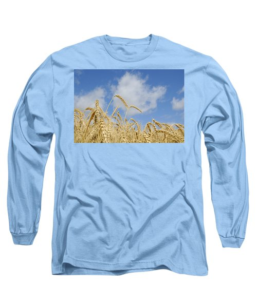 Field Of Wheat Long Sleeve T-Shirt by Charles Beeler