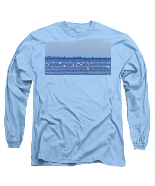 Flamingos In The Pond Long Sleeve T-Shirt