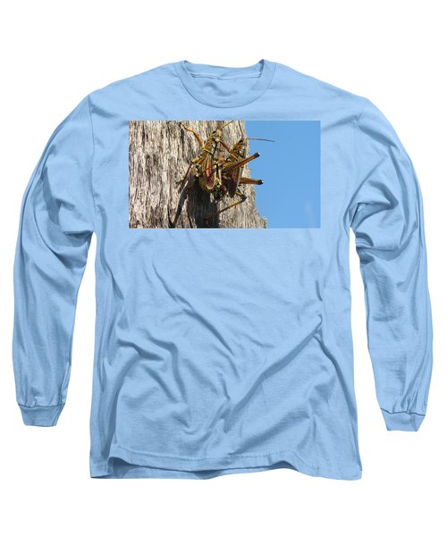 Grasshoppers Long Sleeve T-Shirt