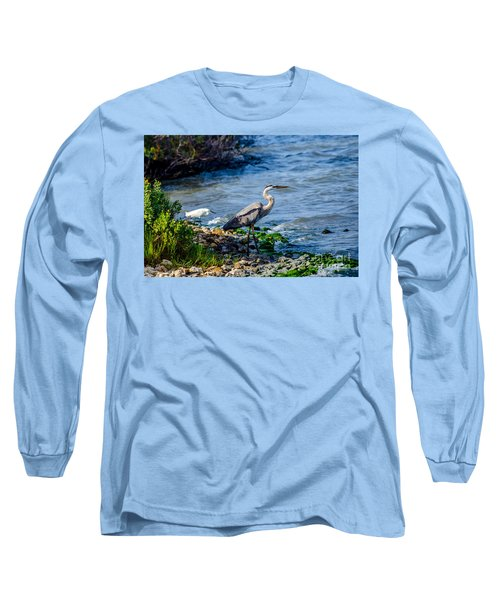 Great Blue Heron And Snowy Egret At Dinner Time Long Sleeve T-Shirt