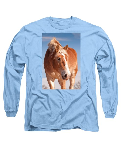 Hanks Sweetness Long Sleeve T-Shirt