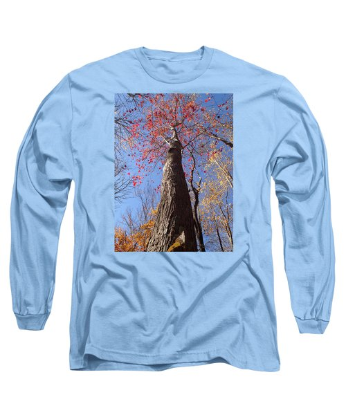 In The Woods 1 Long Sleeve T-Shirt