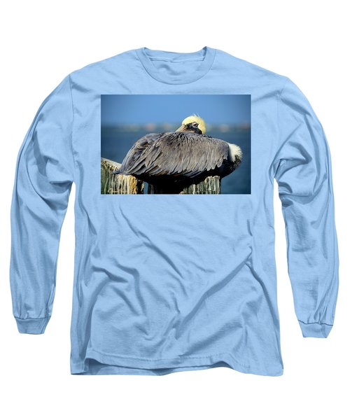Let Sleeping Pelicans Lie Long Sleeve T-Shirt