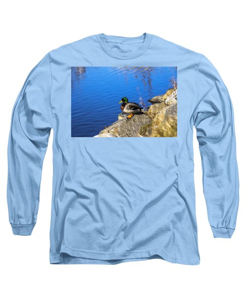 Mallard Looking Over His Domain Long Sleeve T-Shirt