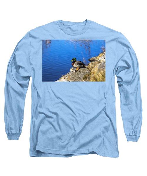 Mallard Looking Over His Domain Long Sleeve T-Shirt