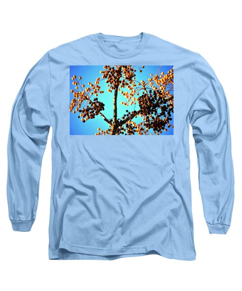 Long Sleeve T-Shirt featuring the photograph Nuts And Berries by Matt Harang