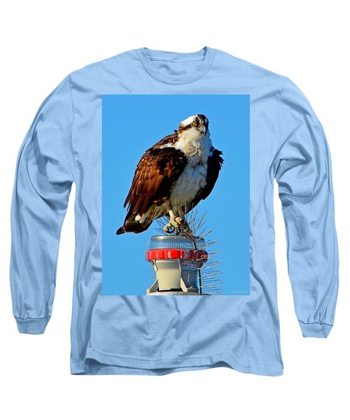 Long Sleeve T-Shirt featuring the photograph Osprey Close-up On Water Navigation Aid by Jeff at JSJ Photography