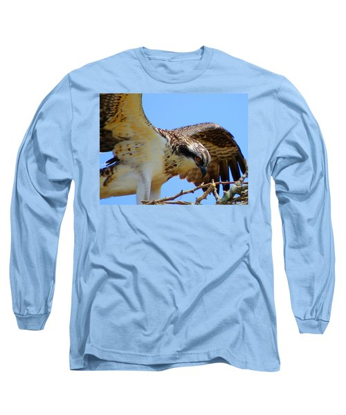 Long Sleeve T-Shirt featuring the photograph Osprey Youth by Dianne Cowen