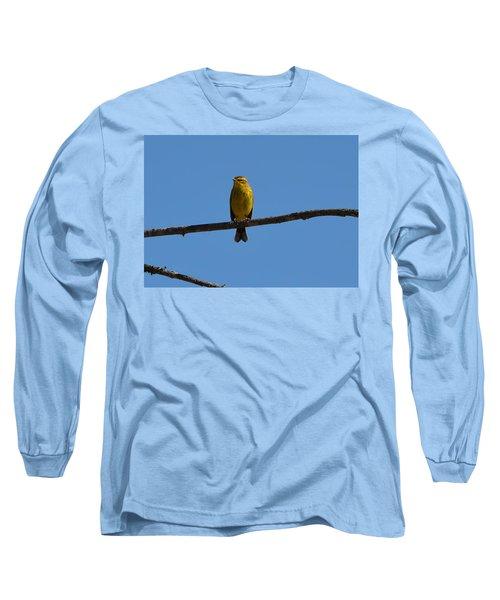 Palm Warbler Long Sleeve T-Shirt by James Petersen