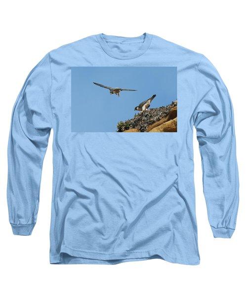 Peregrine Falcons - 6  Long Sleeve T-Shirt
