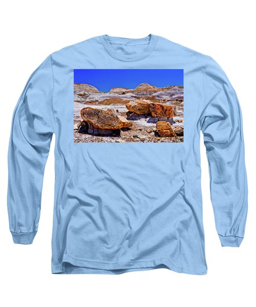 Long Sleeve T-Shirt featuring the photograph Petrified Forest - Painted Desert by Bob and Nadine Johnston