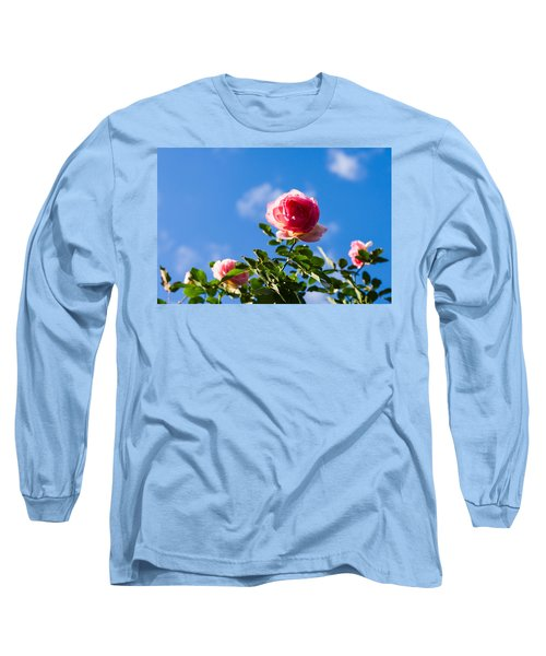 Pink Roses - Featured 3 Long Sleeve T-Shirt by Alexander Senin