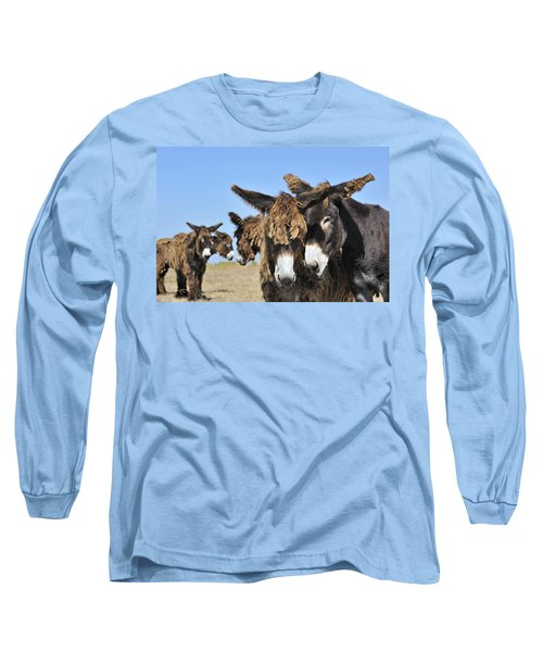 Long Sleeve T-Shirt featuring the photograph Poitou Donkey 3 by Arterra Picture Library