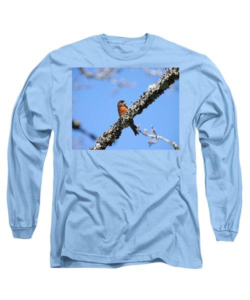 Red Crossbill Finch Long Sleeve T-Shirt