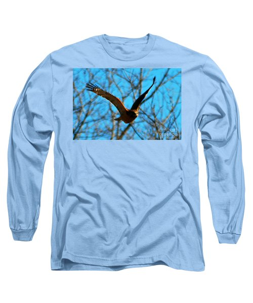 Long Sleeve T-Shirt featuring the photograph Red Tail Hawk In Flight by Peggy Franz