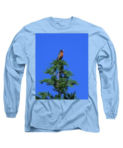 Robin Christmas Tree Topper Long Sleeve T-Shirt