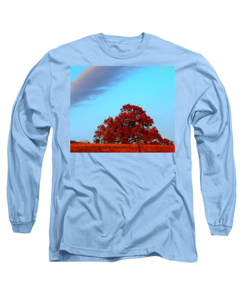 Rural Route Long Sleeve T-Shirt by Chris Berry