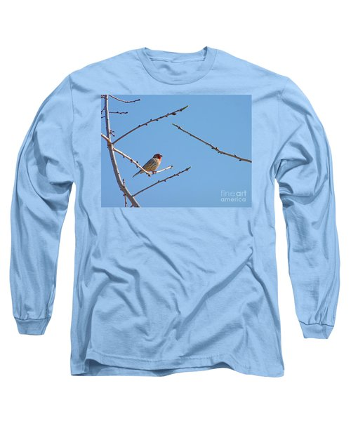 Sky Blue Beauty Long Sleeve T-Shirt