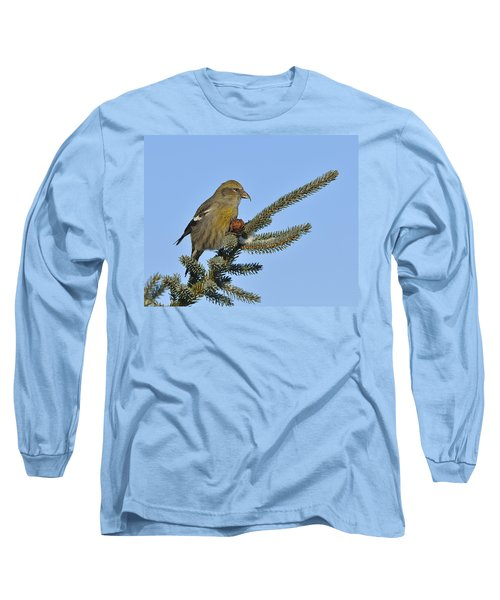 Spruce Cone Feeder Long Sleeve T-Shirt by Tony Beck