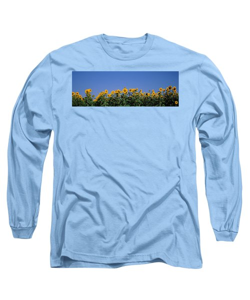 Sunflowers In A Field, Marion County Long Sleeve T-Shirt
