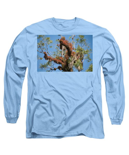 Tikal Furry Tree Closeup Long Sleeve T-Shirt