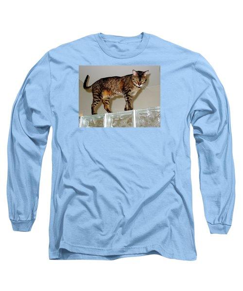 Long Sleeve T-Shirt featuring the photograph Tora On Glass II by Phyllis Kaltenbach