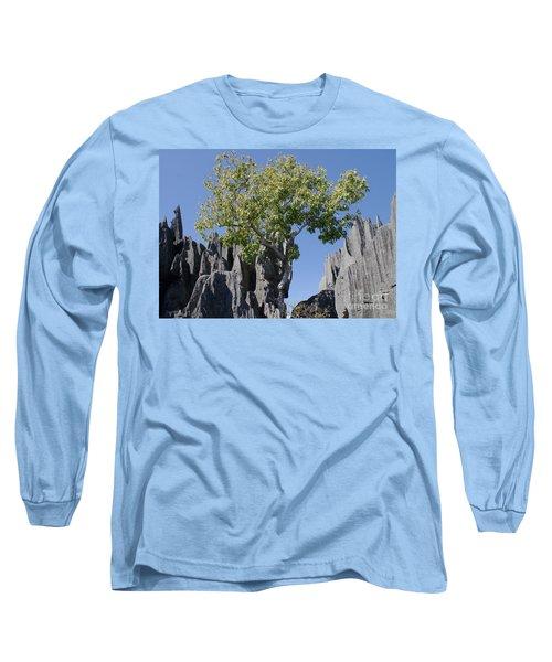 Tree In The Tsingy De Bemaraha Madagascar Long Sleeve T-Shirt by Rudi Prott
