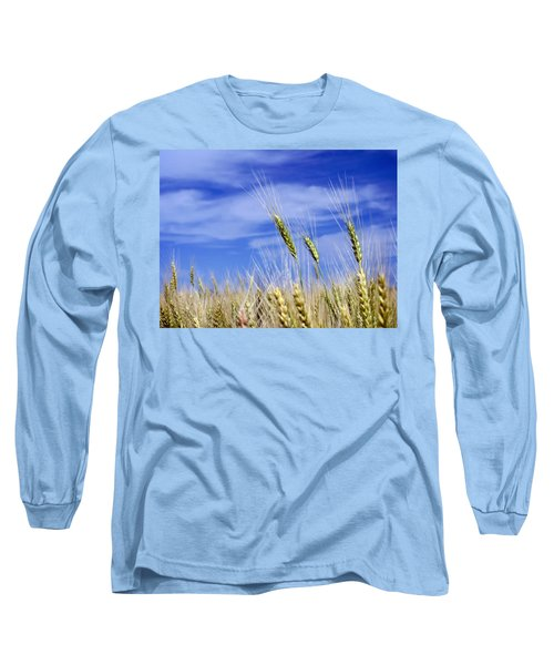 Long Sleeve T-Shirt featuring the photograph Wheat Trio by Keith Armstrong