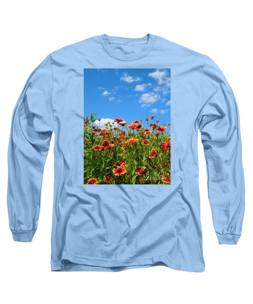 Long Sleeve T-Shirt featuring the photograph Wild Red Daisies #5 by Robert ONeil