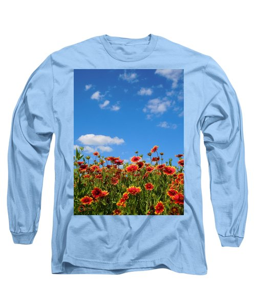 Long Sleeve T-Shirt featuring the photograph Wild Red Daisies #6 by Robert ONeil