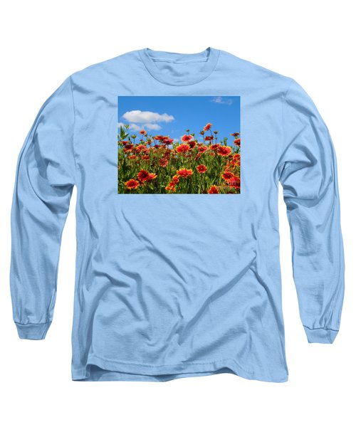 Long Sleeve T-Shirt featuring the photograph Wild Red Daisies #7 by Robert ONeil